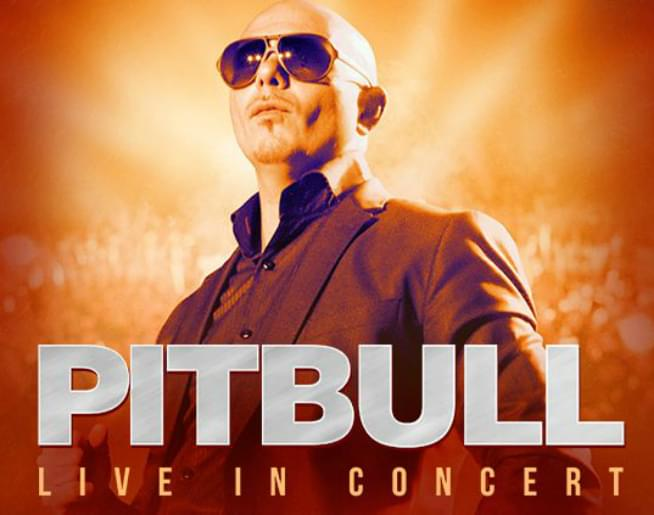 Pitbull at AVA Amphitheater