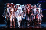 New Cats Trailer: Creepy Or Cute?