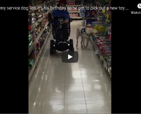 LOVE THIS!  This Service Dog knew exactly what to pick out!