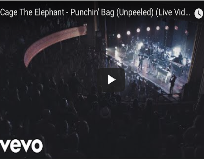 Watch Cage The Elephant S New Live Video For Punchin Bag X1051 Kcjk Fm