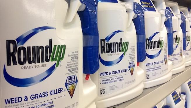 SF jury orders Monsanto to pay $289 million to cancer patient