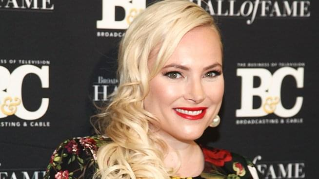 Meghan McCain's Controversial Remarks on Guns & Marriage Counseling