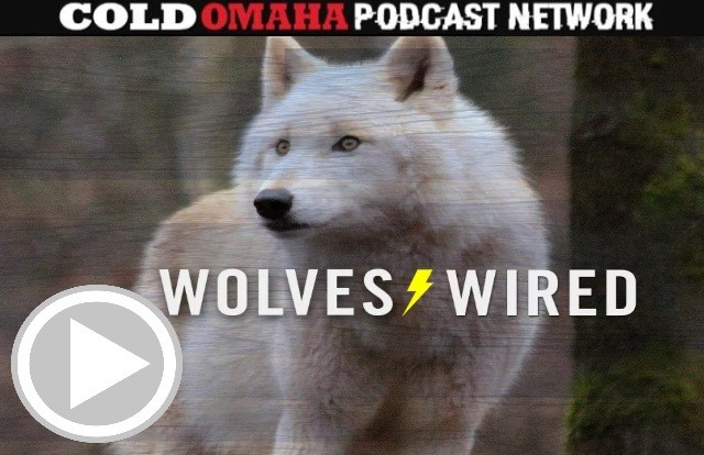 WOLVES WIRED: Is Rubio's Absence Killing the Wolves?