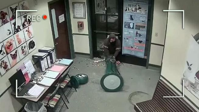 Thief Unsuccessfully Tries Dragging Gumball Machine Through Doggy Door