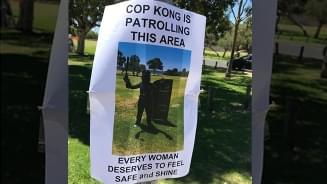 Cop Kong Helps Apprehend Serial Flasher