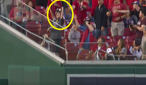 Nationals Fan Takes Foul Ball Off The Top Of Head