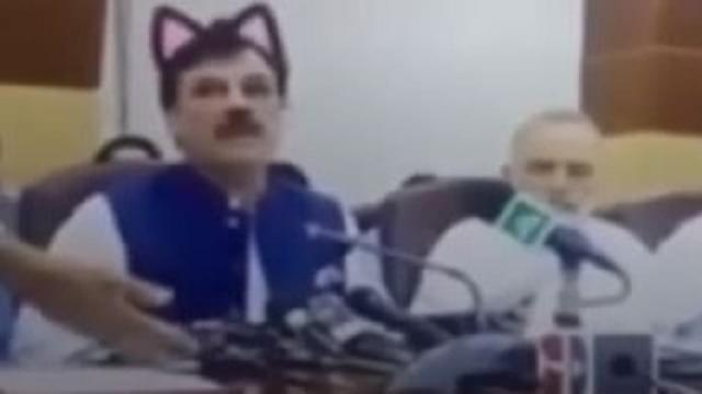 Politician's Press Conference Gets Cat-Filtered