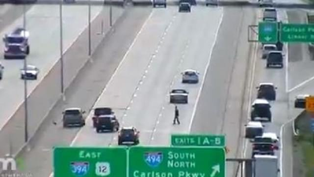 """Idiot Crosses 394 to """"Save"""" a Goose"""