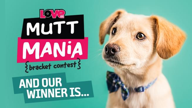 Mutt Mania Contest: And Our Winner Is…