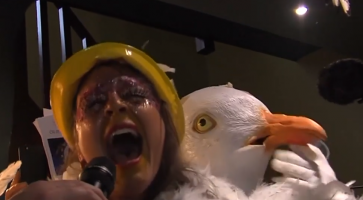 VIDEO: Seaside town holds bird-impersonating contest
