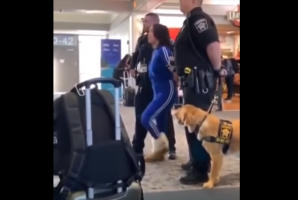 VIDEO: Woman Gets Arrested and Has a Meltdown at Airport