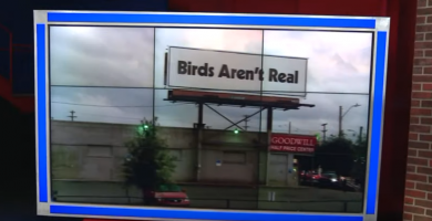 """VIDEO: """"Birds Aren't Real"""" Campaign Is Proof That 2019 Has Gone Off The Rails"""