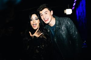 Camila Cabello & Shawn Mendes Seen Having A PDA Outing