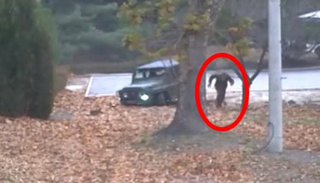 Dramatic Video Shows N. Korean Soldier Shot As He Flees Across Border