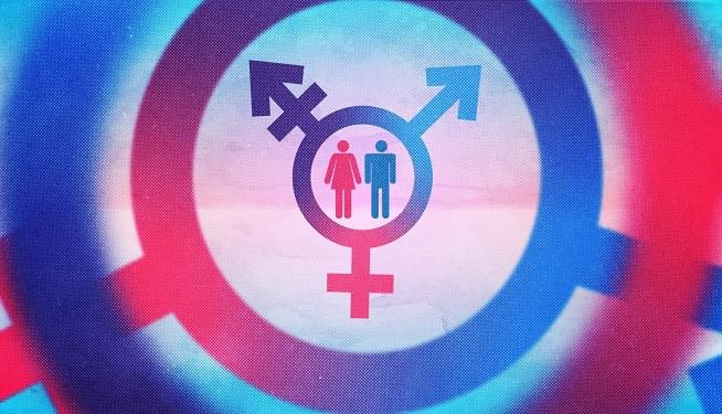 Read from PJ Media: Radical Feminist: Transgender Activism Is a 'Men's Rights Movement'