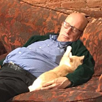 Photo of Volunteer Naping w/ Cats Goes Viral – Donations Pour In!