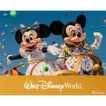 Your Chance to Win a Walt Disney World Vacation from mix107.3!