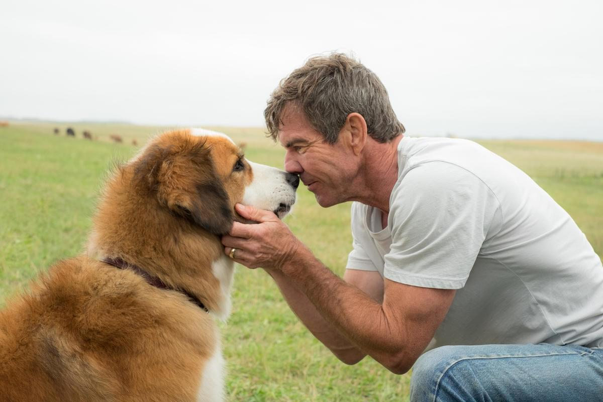 Actor Dennis Quaid joins Bernie & Sid in the Morning [On-Demand Audio]