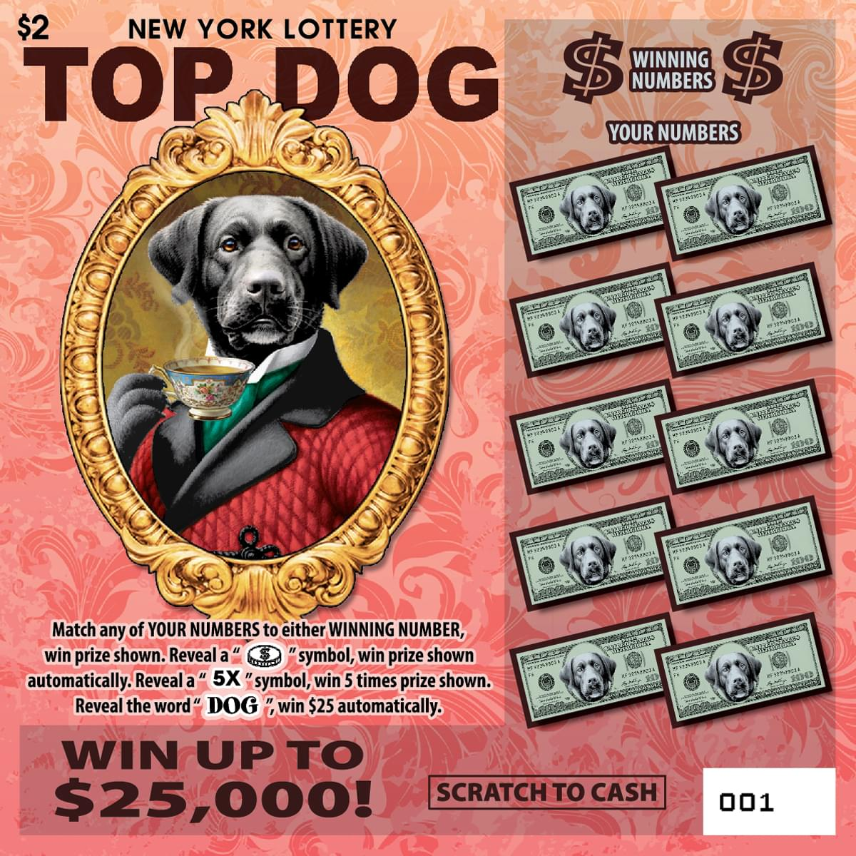 Win New York Lottery Top Dog Scratch-off Tickets!
