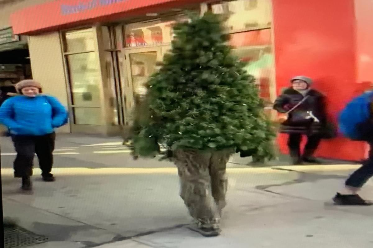 Human Christmas tree spotted walking around NYC