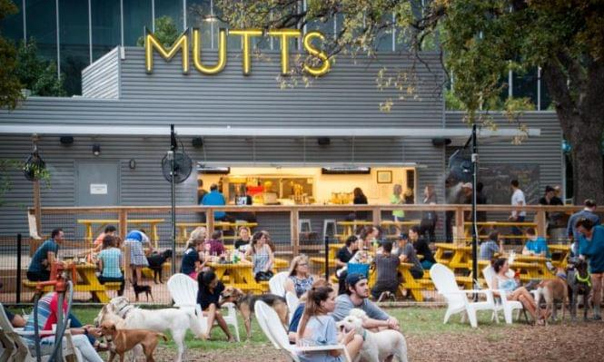 Mutts Cantina Moving Into Fort Worth | KPLX-FM