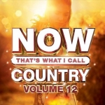 Win a copy of Now That's What I Call Country – Volume 12!