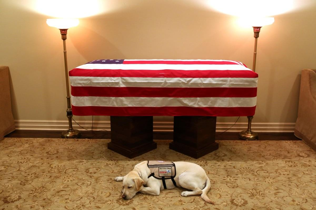 President George H.W Bush's Service Dog To Help Wounded Soldiers