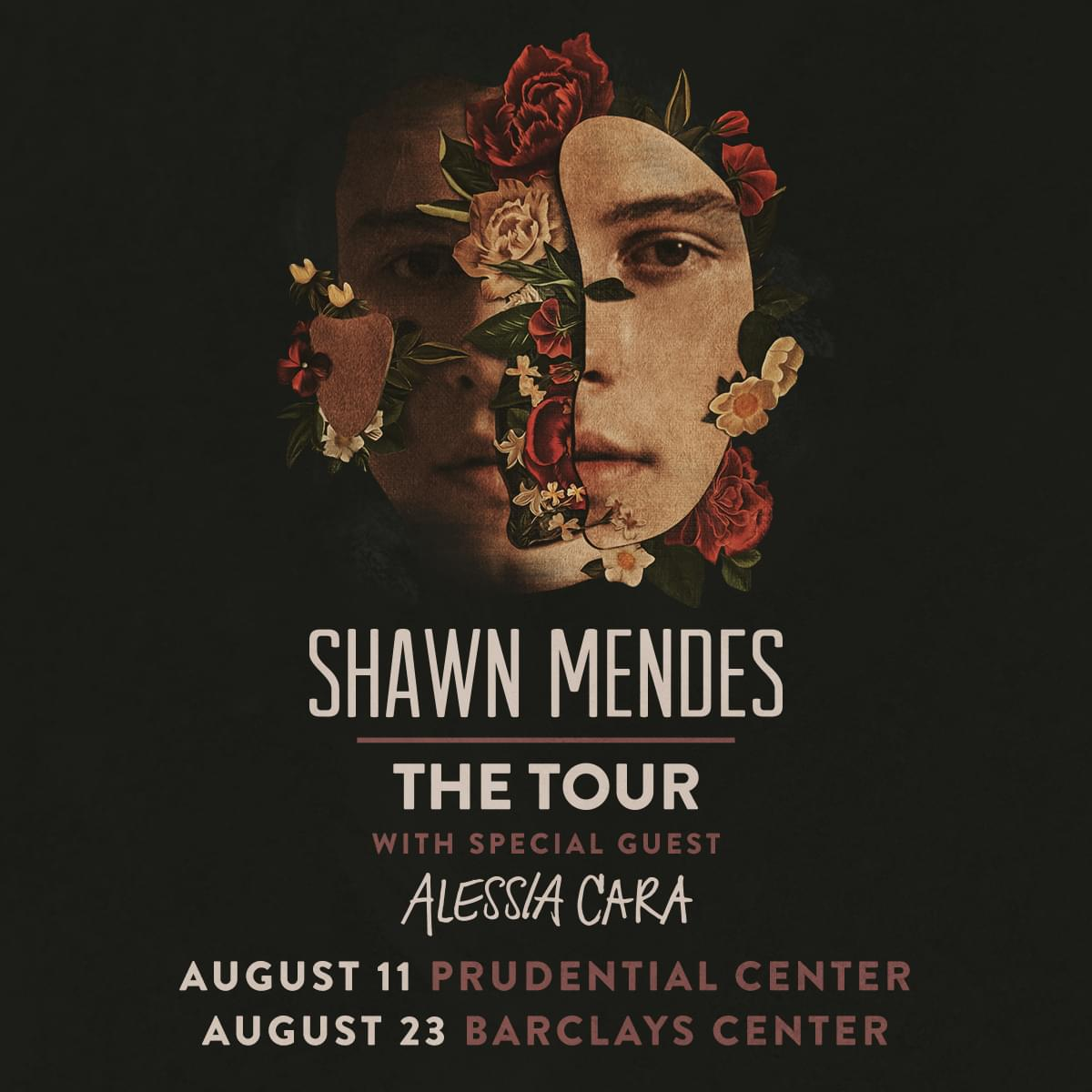 Win Shawn Mendes Tickets… Before You Can Buy Them!