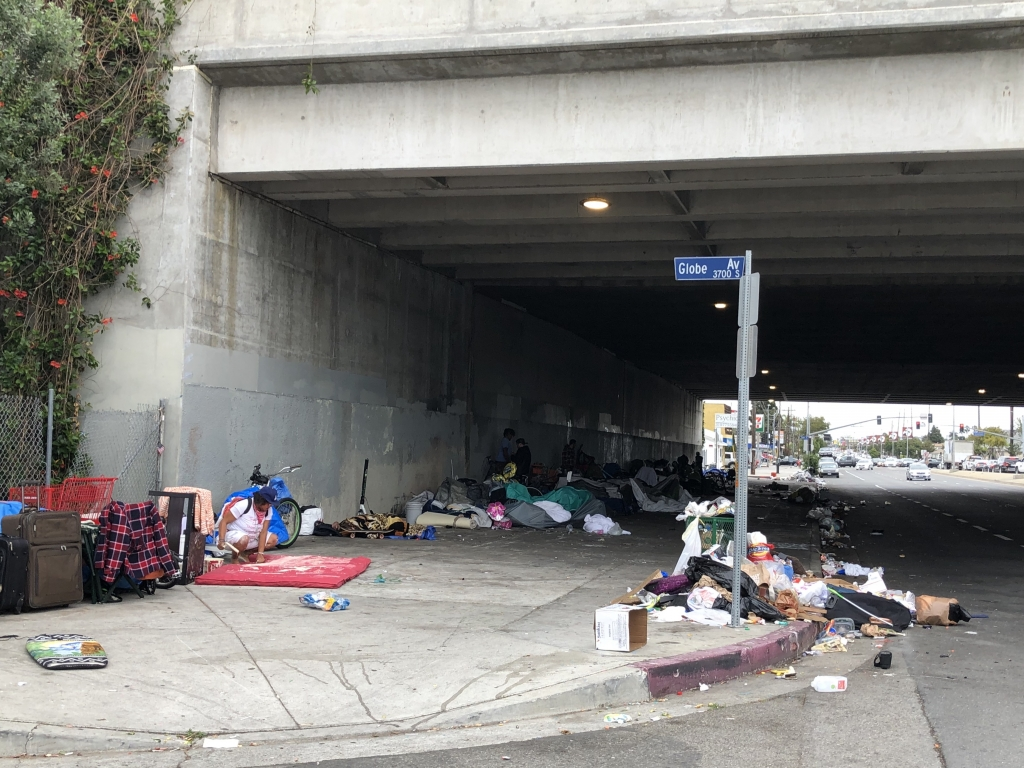 Rat-infested garbage in Los Angeles threatens public health