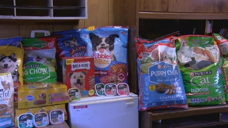 Delivery Service Partners With Non-Profit To Feed Pets