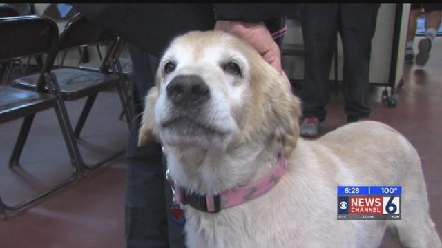 State Farm Donates To PETS Clinic