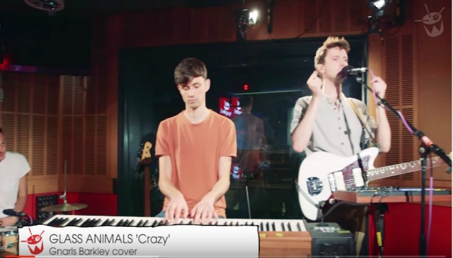 Glass Animals Are Crazy!