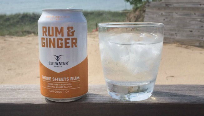 Canned Cocktails Perfect For Summer Drinking