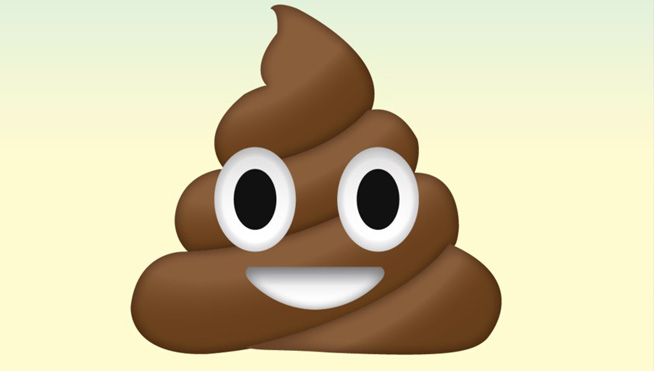 'Poop bandit' on the loose in Chicago