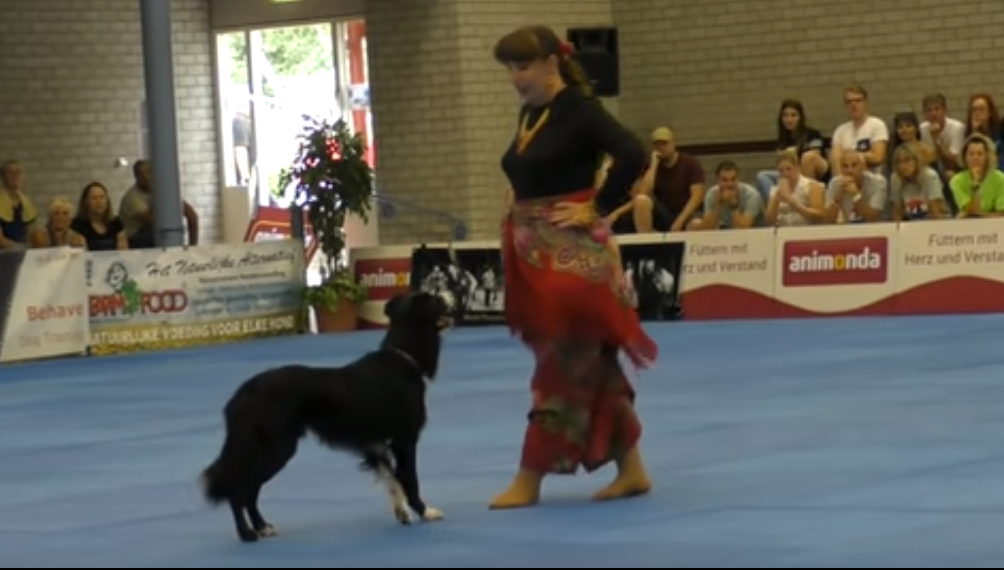 🐶 Dog dancing is a competition sport, and it's Friday, so why not?