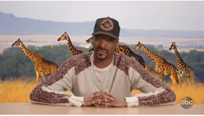 Snoop's Wild Kingdom – bat vs. scorpion