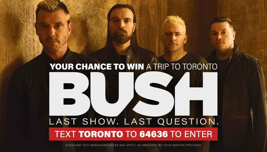 Your Chance to See Bush in Toronto