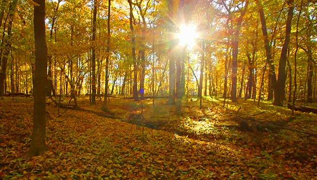 Where's the best outdoor locations to experience fall?