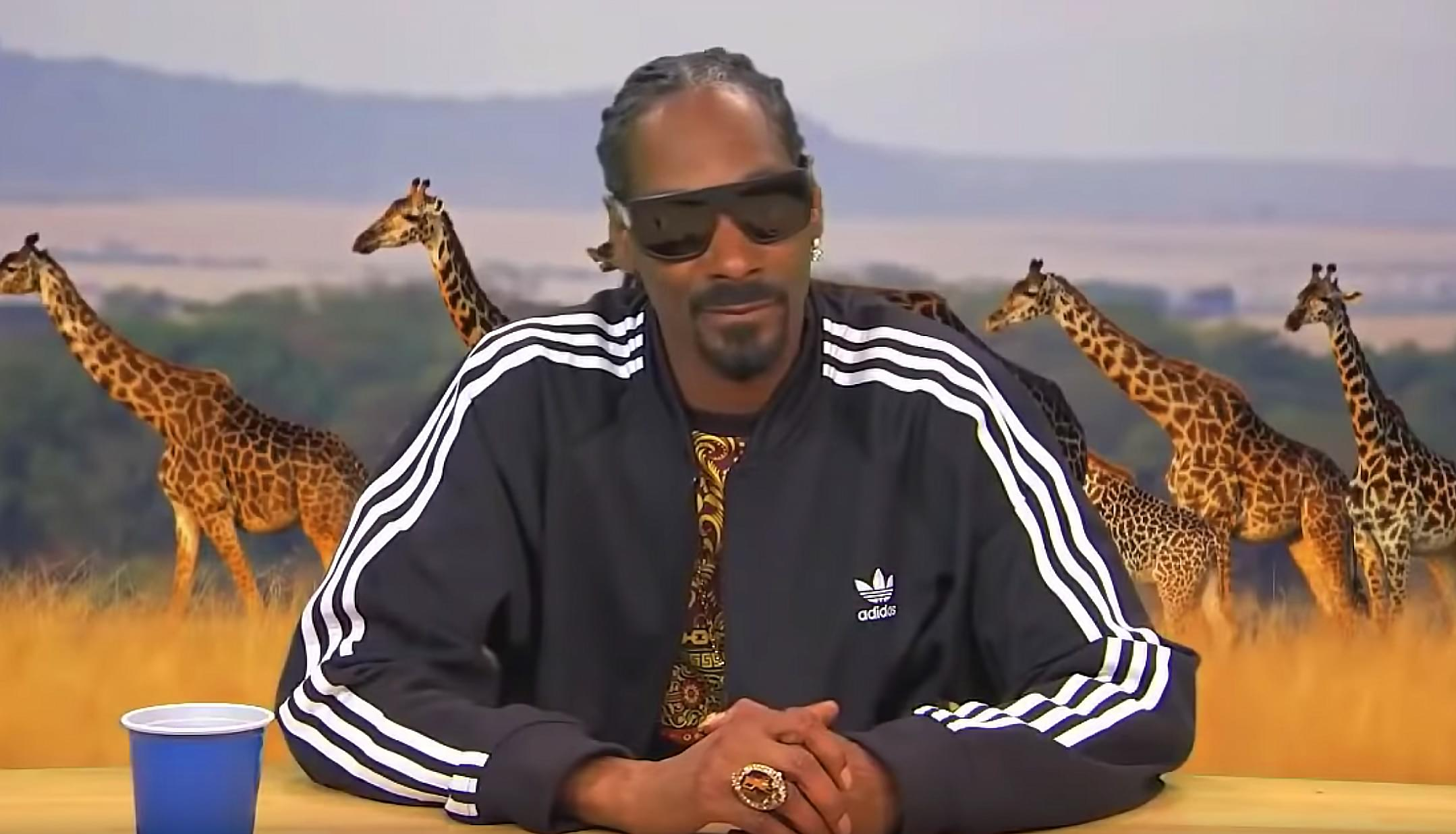 Snoop Dogg will headline the 2019 Illinois State Fair