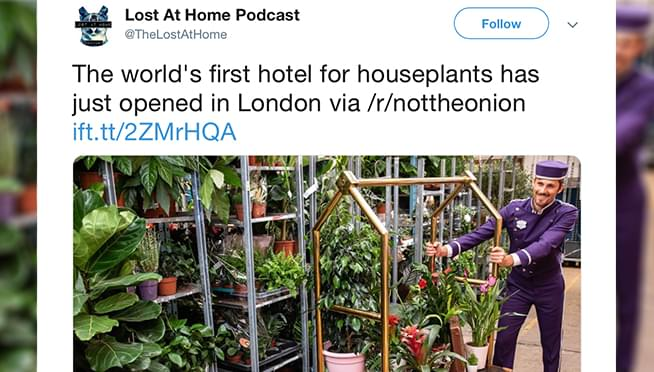 The world's first hotel for houseplants just opened