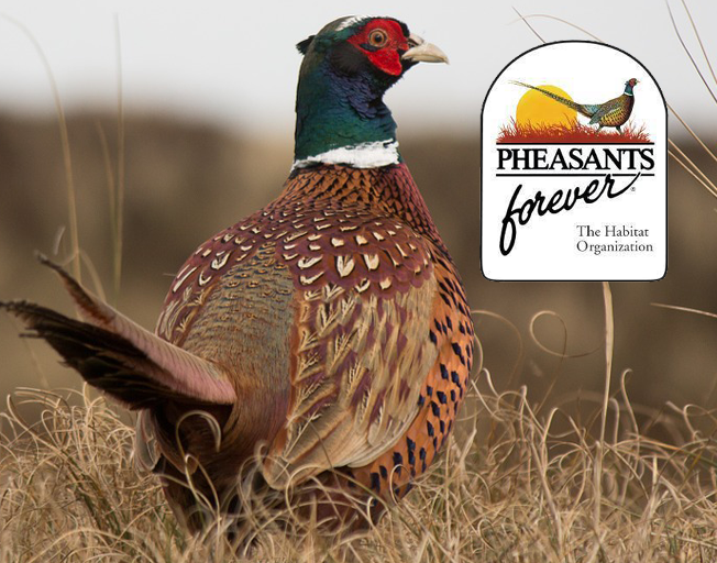 33rd Annual McLean County Pheasants Forever Banquet