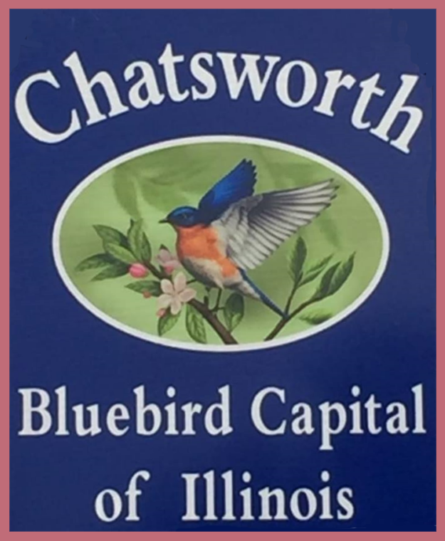Chatsworth Getting Ready for Bluebird Festival