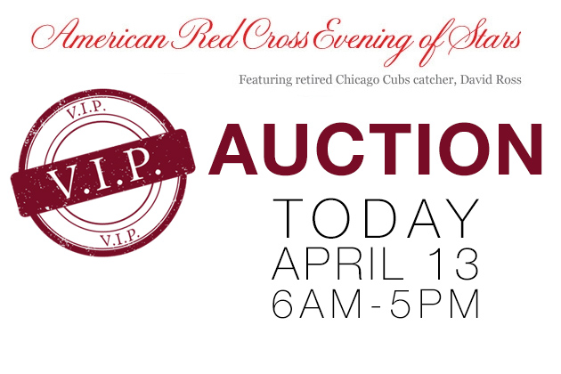 Evening of Stars VIP Package Auction