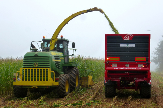 Harvest could start soon for some Illinois farmers