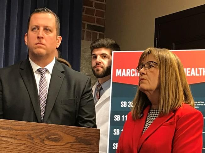 Illinois lawmakers introduce 'March to Mental Health'