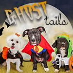 Ghost Tails