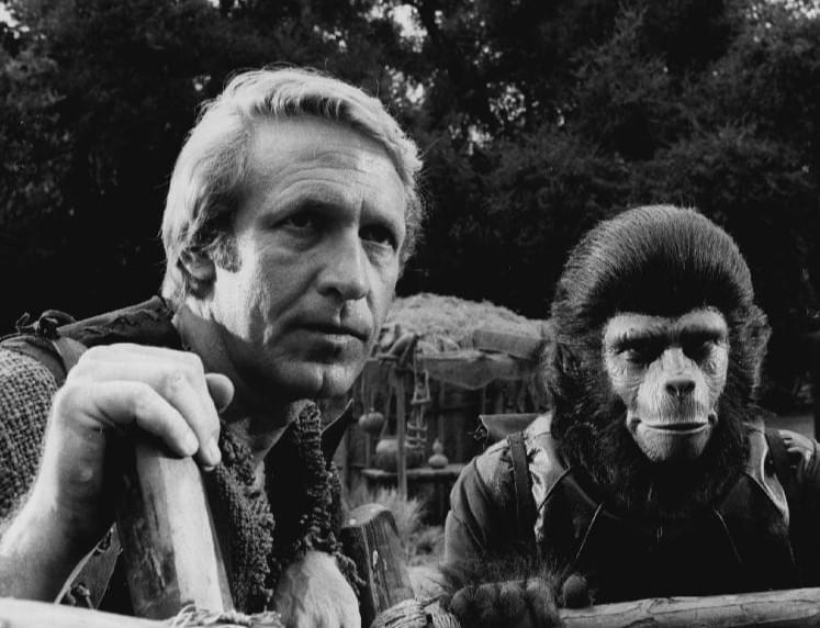 Planet Of The Apes! Is It A Possibility?