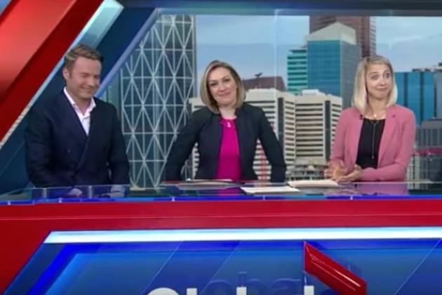 Watch These Anchors Crack Up Over 'Play With Yourself' Line [VIDEO]