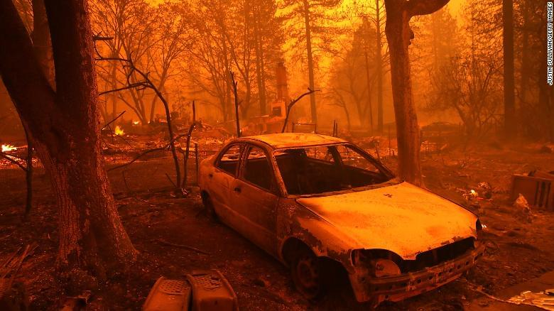 18 Million Trees Died in California in 2018