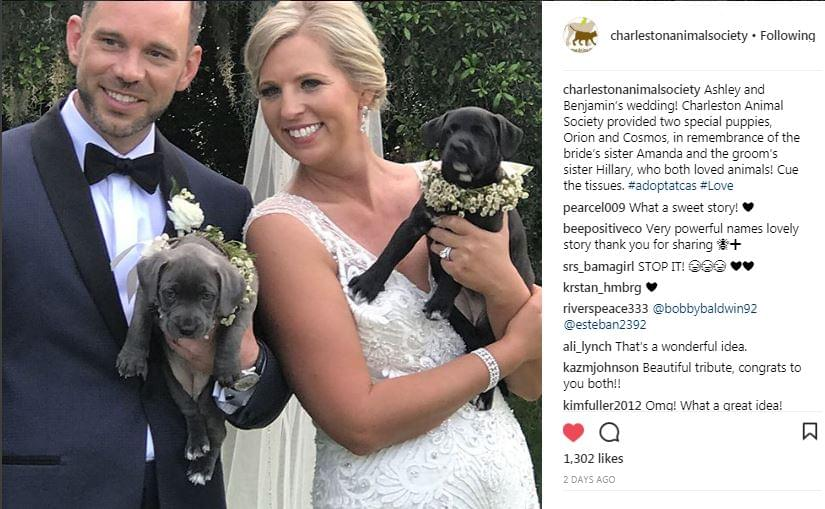 Charleston Animal Society Helps Couple Have Unforgettable Wedding
